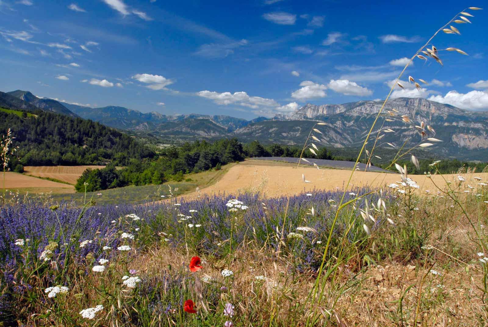 drome paysage - Image